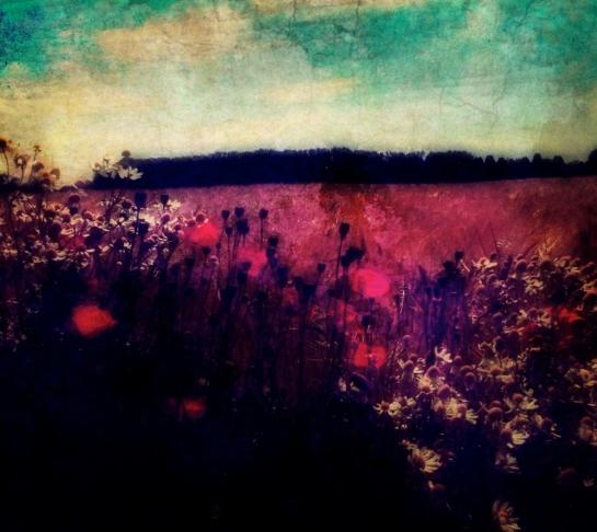 Monet Pixel Painting