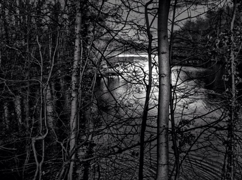 Silver_Lake_Sean_Hayes_Belgium