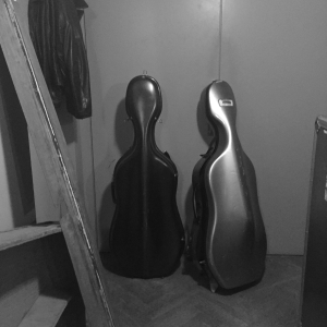 Bass_Violin_Backstage_Bozar_Sean_Hayes*