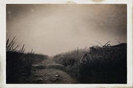 Wicklow Way © Sean Hayes