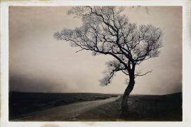 Military Road © Sean Hayes