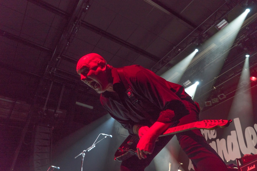 Baz_Warne_The_Stranglers_Het_Depot_Leuven_Nov_2015
